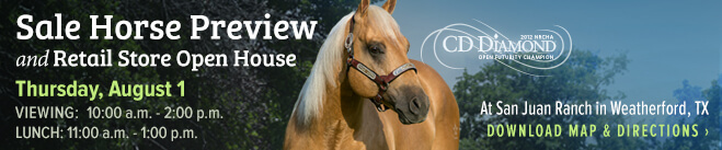 Sale horse preview and retail open house at San Juan Ranch, Thursday August 1st from 10am to 2pm.